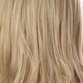 Haarfarbe ASH - Ashley Blonde - Aschblond